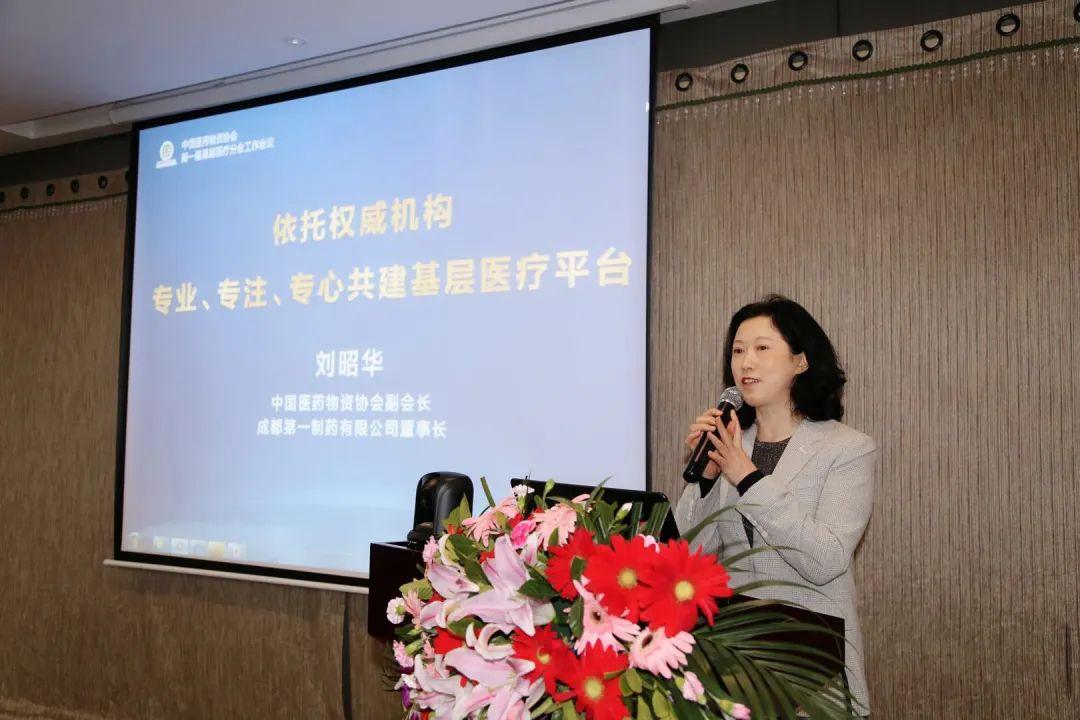 刘昭华在会上作《依托权威机构 专业、专注、专心共建基层医疗平台》主题报告.jpg